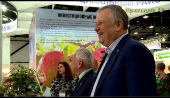 """""""АГРОРУСЬ 2019"""""""