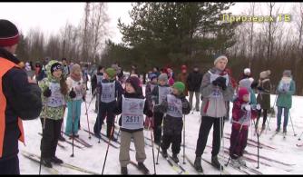 Приозерск принял участие во всероссийской гонке «Лыжня России»