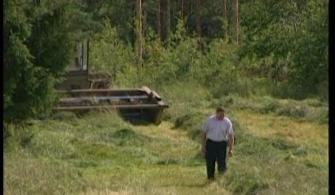 История промышленности и сельского хозяйства в Приозерском районе